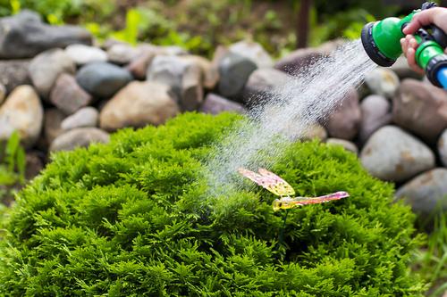 Bewässerungssystem Service Bielefeld Garten